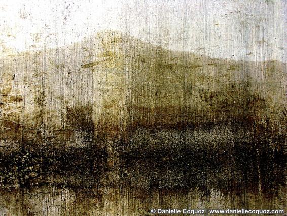 Murs-paysages de XIDI