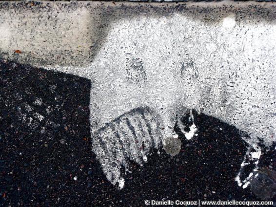 Longues moustaches et larmes d'hydrogène / voilà l'animal féroce qui désole les mécaniques